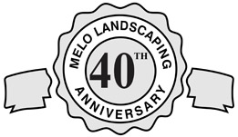 40 Anniversary Small